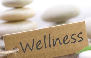 Ten Disciplines of Wellness
